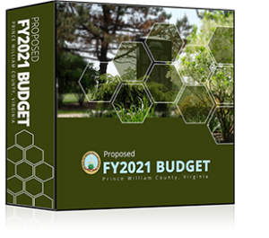 Budget Book Graphic FY2021