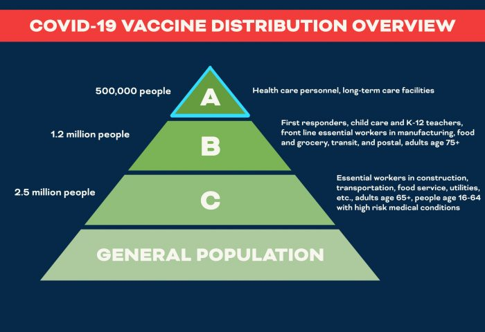 Virginia Vaccine Distribution Chart Shows Prioritization of Various Groups
